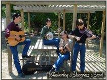 Wimberley Bluegrass Band