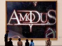 Amodus