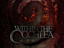 Within The Cochlea