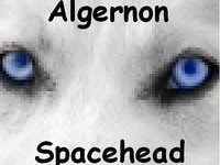 Algernon Spacehead