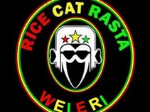Rice cat rasta