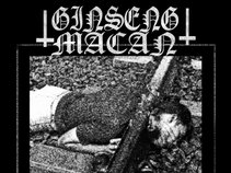 GINSENG MACAN (crustgrind/powerviolence)