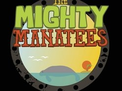 Image for The Mighty Manatees