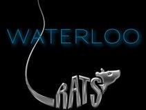 Waterloo Rats
