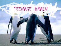 Teenage Brain