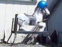 Helmet Pony