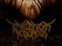 Insalubrious Sonorous