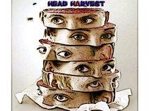 Head Harvest