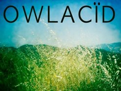 Image for OWLACÏD