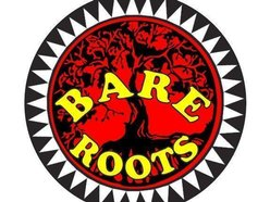 Image for Bare Roots