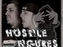 Image for Hostile Figures