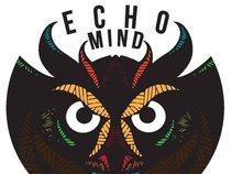 Echo Mind
