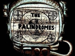 Image for The Palindromes