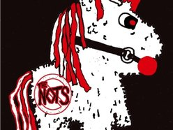 Image for The Nots