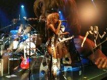 Simply Tina Tribute Band