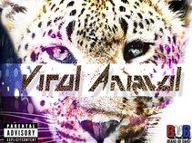 Viral Animal