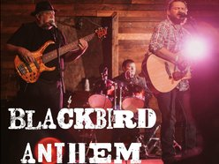 Blackbird Anthem