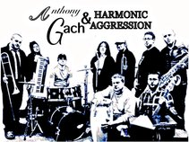 Anthony Gach & Harmonic Aggression