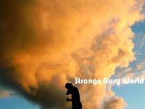 Strangebusyworld