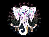 Elephant State
