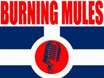 Burning Mules