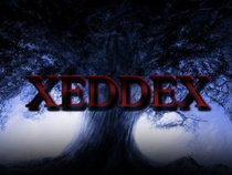 XEDDEX™ Official Page
