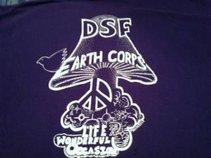 DSF Earth Corps