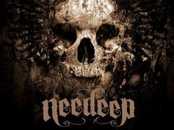 Image for NEEDEEP