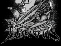 Corvus Metal