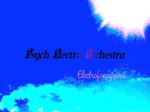 Psych Electro Orchestra