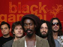Image for Black Gandhi