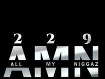 A.M.N