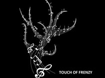 Touch of Frenzy Music
