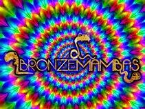Bronze Mambas