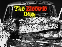 The Electric Dogs