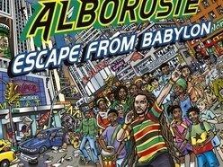 Image for Alborosie