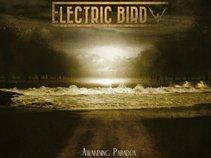 Electric Bird