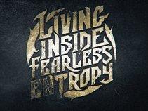 Living Inside Fearless Entropy