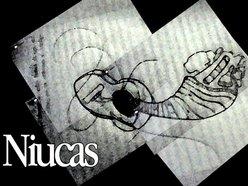 Niucas