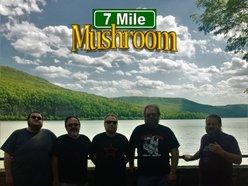 Image for 7 Mile Mushroom