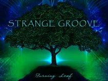 Strange Groove