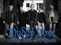 Muddy Dove