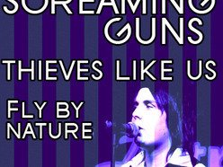 Image for Screaming Guns