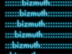 Image for bizmuth