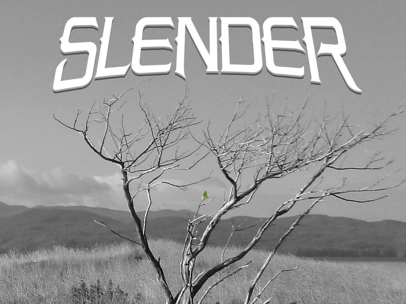 Image for Slender