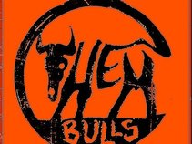 Them Bulls
