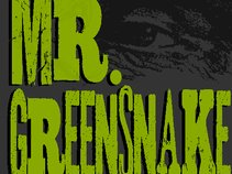 Mr. Greensnake
