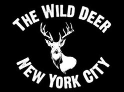 Image for The Wild Deer