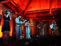 BrownChicken BrownCow StringBand