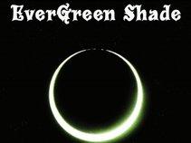 Evergreen Shade